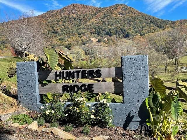 TBD Raccoon Point #12, Waynesville, NC 28786 (#3800365) :: Homes Charlotte