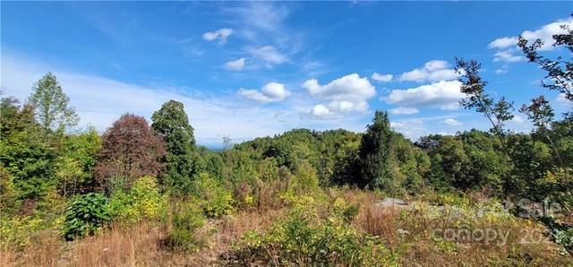 170 Summit Drive #63, Nebo, NC 28761 (#3800459) :: Ann Rudd Group