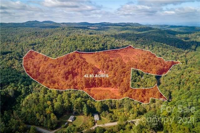966 Cherry Grove Road, Moravian Falls, NC 28654 (#3800464) :: High Performance Real Estate Advisors