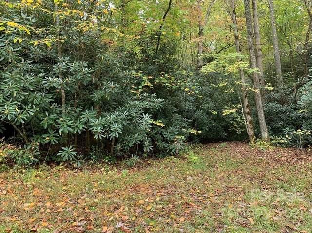 TBD S Rhododendron Circle Lot 64/Blk 4, Almond, NC 28702 (#3800701) :: Ann Rudd Group