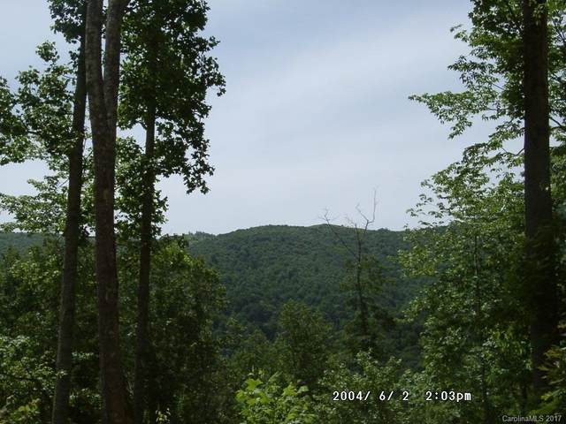 Lot 14 Happy Hollow Road #14, Clyde, NC 28721 (MLS #NCM445808) :: RE/MAX Journey