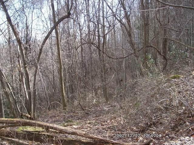 25 Running Deer Lane #25, Mars Hill, NC 28754 (#NCM455211) :: Premier Realty NC