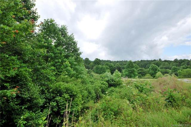 2 Kelly Mountain Road #2, Brevard, NC 28712 (#NCM542147) :: Mossy Oak Properties Land and Luxury