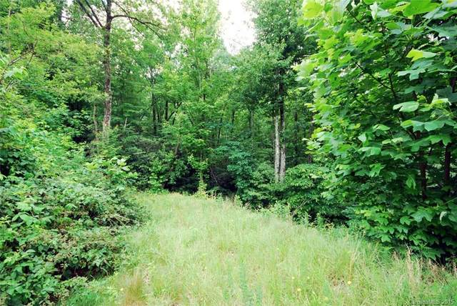 23 Kelly Mountain Road #23, Brevard, NC 28712 (#NCM542175) :: Mossy Oak Properties Land and Luxury