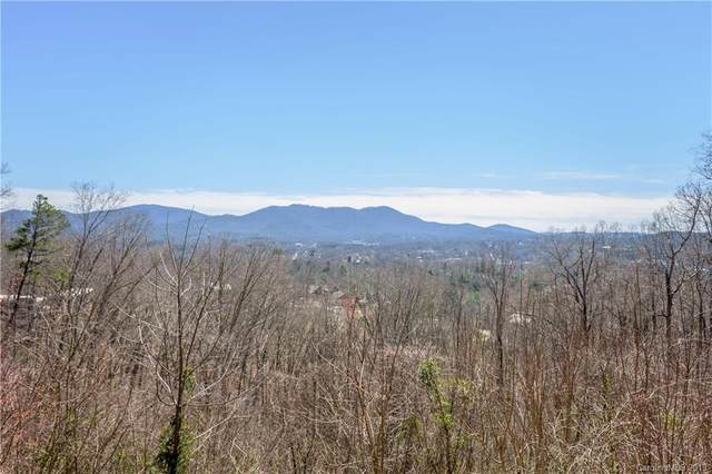 22 Samuel Ashe Drive #45, Asheville, NC 28805 (#NCM565181) :: Keller Williams South Park