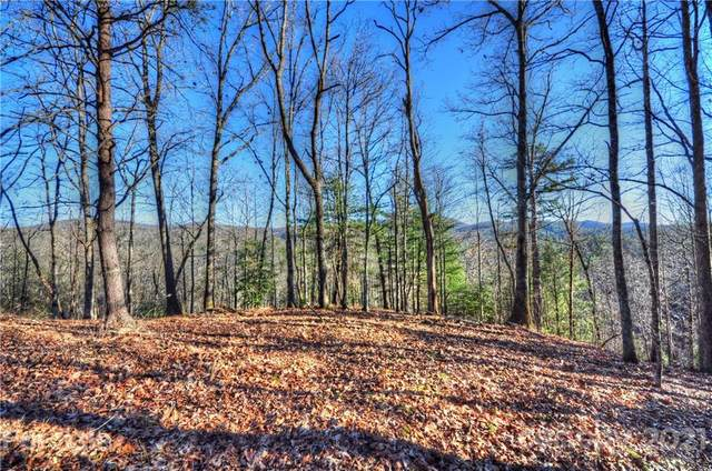 110 Stone Valley Way #20, Hendersonville, NC 28792 (#3141186) :: LePage Johnson Realty Group, LLC