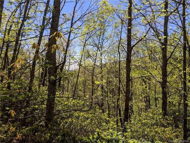 259 Winding Ridge Road #2, Black Mountain, NC 28711 (#3278688) :: Rinehart Realty