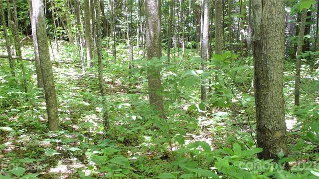 LOT 20 Thrush Drive #20, Maggie Valley, NC 28751 (#3313115) :: Mossy Oak Properties Land and Luxury