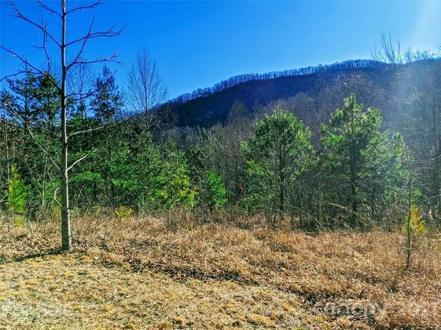 71 Tam Drive #7, Waynesville, NC 28786 (#3322795) :: Robert Greene Real Estate, Inc.