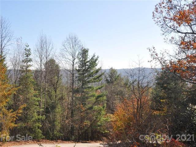 45 South Ridge Drive, Hendersonville, NC 28739 (#3401970) :: The Premier Team at RE/MAX Executive Realty