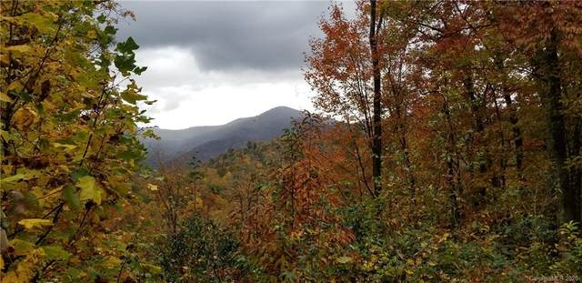 Lot 8 & 9 Roselyn Park Drive, Waynesville, NC 28785 (#3410246) :: Ann Rudd Group