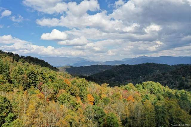 VL 308 Mountain Forest Road #308, Sylva, NC 28779 (#3416513) :: Robert Greene Real Estate, Inc.