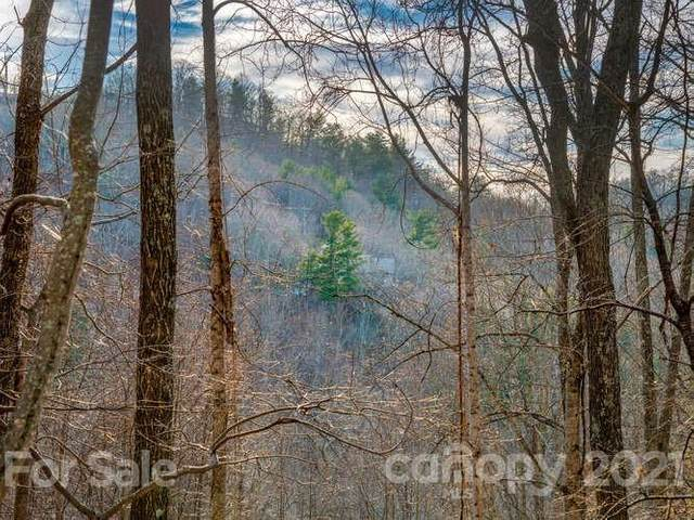 42 Mountain Vista Drive, Asheville, NC 28804 (#3457320) :: Bigach2Follow with Keller Williams Realty