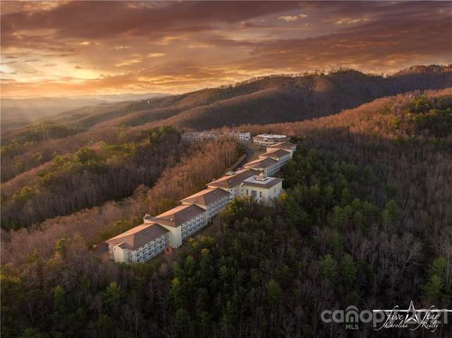 3600 Heavenly Drive, Boone, NC 28607 (#3460652) :: Stephen Cooley Real Estate Group