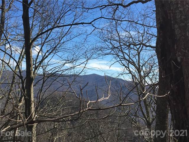 21 Reillys Bluff Road, Barnardsville, NC 28709 (#3480898) :: Caulder Realty and Land Co.