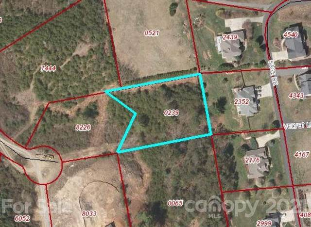 99999 Nader Avenue #14, Weaverville, NC 28787 (#3486649) :: Premier Realty NC