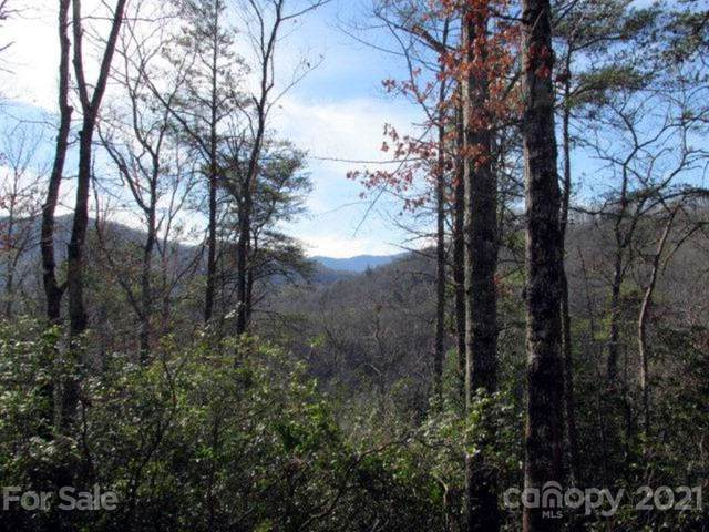 33 Wild Top Trail, Cullowhee, NC 28723 (#3490361) :: Willow Oak, REALTORS®