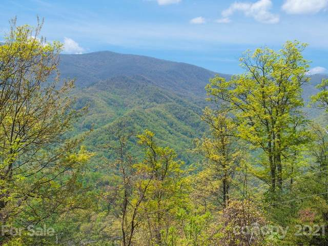 406 Lucerne Drive, Canton, NC 28716 (#3502417) :: Mossy Oak Properties Land and Luxury