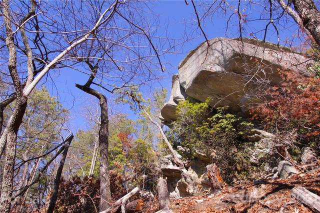47&48 Round Mountain Road 47&48, Brevard, NC 28712 (#3517717) :: Mossy Oak Properties Land and Luxury