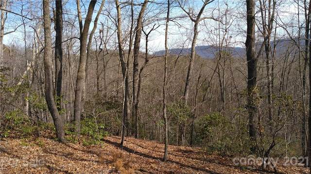 Lot 24 Crooked Creek Estates #24, Old Fort, NC 28762 (#3523761) :: LePage Johnson Realty Group, LLC