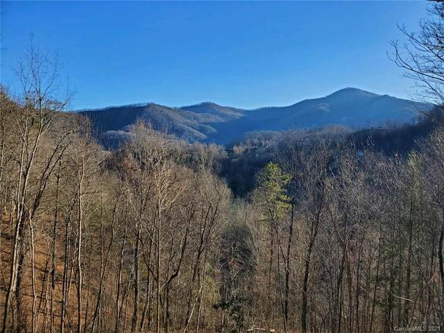 14 Junebug Trail #14, Waynesville, NC 28785 (#3536950) :: Scarlett Property Group