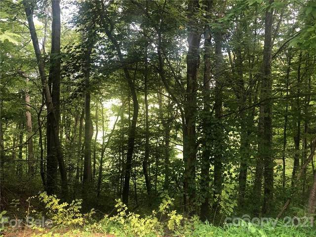 75 S Lindon Cove Road, Candler, NC 28715 (#3541123) :: Mossy Oak Properties Land and Luxury