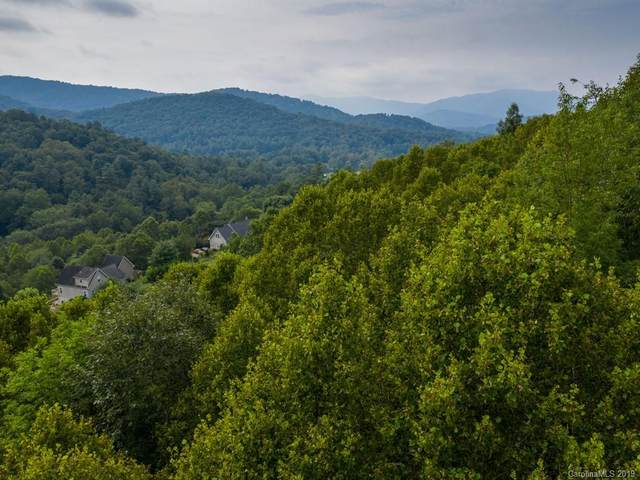 99999 Apple Tree Way, Asheville, NC 28805 (#3542065) :: High Performance Real Estate Advisors