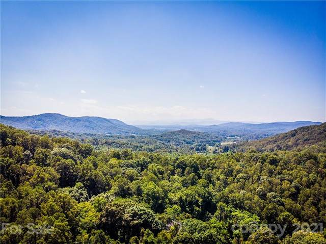 9999 Smith Knolls Road, Fairview, NC 28730 (#3546857) :: Mossy Oak Properties Land and Luxury