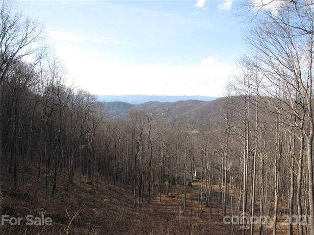 99 NE Howland Road #24, Asheville, NC 28804 (#3559979) :: The Mitchell Team