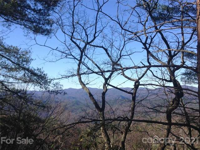 Tract 3 Bear Pen Hollow Road Tract 3, Brevard, NC 28712 (#3561844) :: Willow Oak, REALTORS®