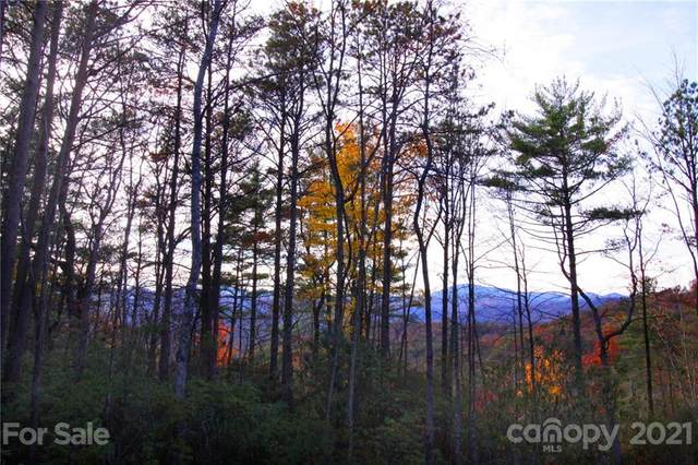 Tract 2 Bear Pen Hollow Road, Brevard, NC 28712 (#3561852) :: Willow Oak, REALTORS®