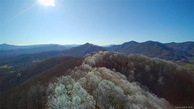 9999 Cave Summit Trail 102-104, Leicester, NC 28748 (#3570043) :: LePage Johnson Realty Group, LLC