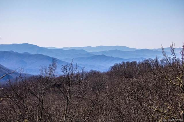 64 Aquina Mountain Road, Maggie Valley, NC 28751 (#3579864) :: SearchCharlotte.com