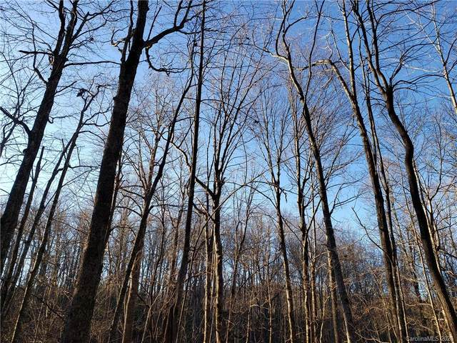 Lot 47 Big Branch Road #47, Brevard, NC 28712 (#3581034) :: Stephen Cooley Real Estate Group