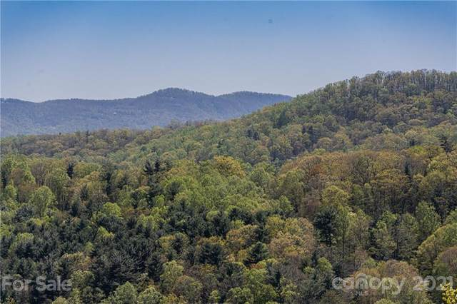0 Curtain Bluff W12, Hendersonville, NC 28791 (#3584664) :: Keller Williams South Park