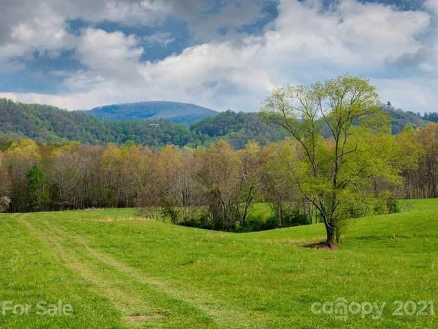 LOT 2 Turkey Ridge Road, Fletcher, NC 28732 (#3585644) :: Keller Williams South Park