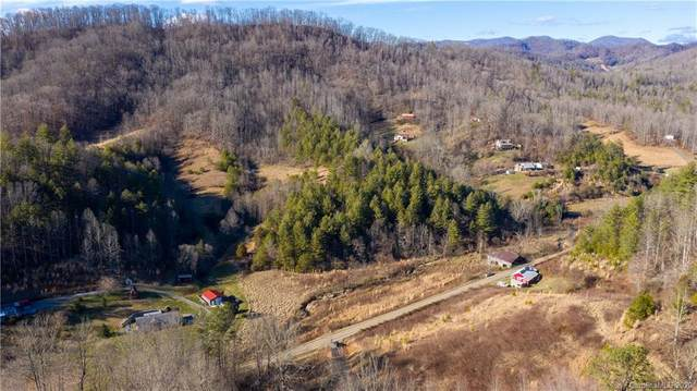 0000 Paint Fork Road, Mars Hill, NC 28754 (#3585781) :: Homes Charlotte