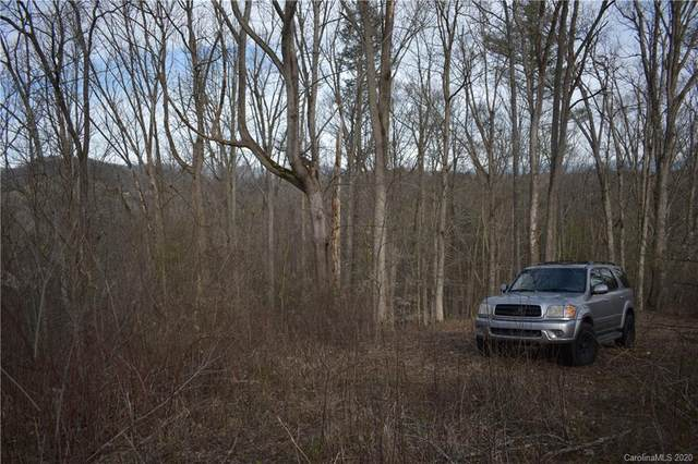 000 Logans Ridge Drive, Marshall, NC 28753 (#3587555) :: LePage Johnson Realty Group, LLC