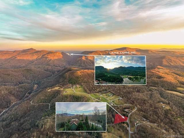20 Timberline Trail #16, Hendersonville, NC 28792 (#3587962) :: The Ordan Reider Group at Allen Tate