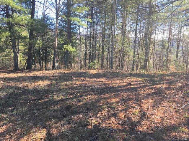319 Morning Air Lane, Hendersonville, NC 28792 (#3589485) :: Mossy Oak Properties Land and Luxury