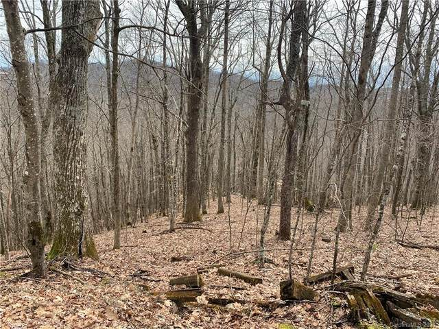 235 Hanging Rock Road, Mars Hill, NC 28754 (#3589816) :: BluAxis Realty