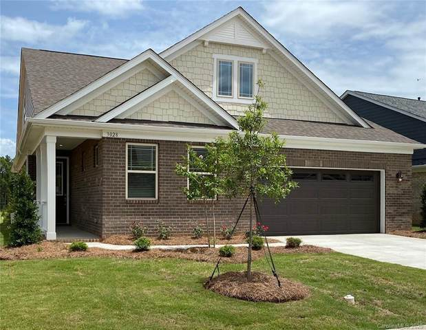3028 Marchers Trace Drive, Mint Hill, NC 28227 (#3590067) :: Stephen Cooley Real Estate Group