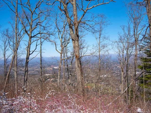 236 Serenity Ridge Trail, Asheville, NC 28804 (#3593148) :: Rinehart Realty