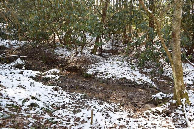 000 Carters Ridge Road, Spruce Pine, NC 28777 (#3594981) :: Carver Pressley, REALTORS®