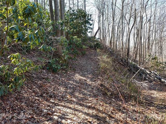 00 Bee Tree Road 103B, Swannanoa, NC 28778 (#3596404) :: Bigach2Follow with Keller Williams Realty