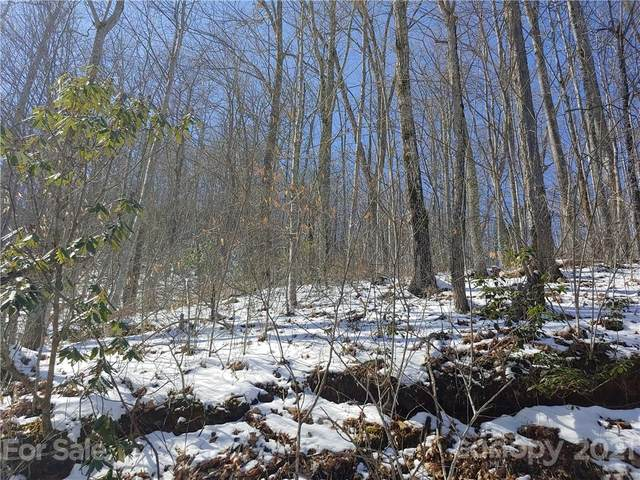 Lot L Hoot Owl Bill Road, Maggie Valley, NC 28751 (#3598271) :: Home and Key Realty