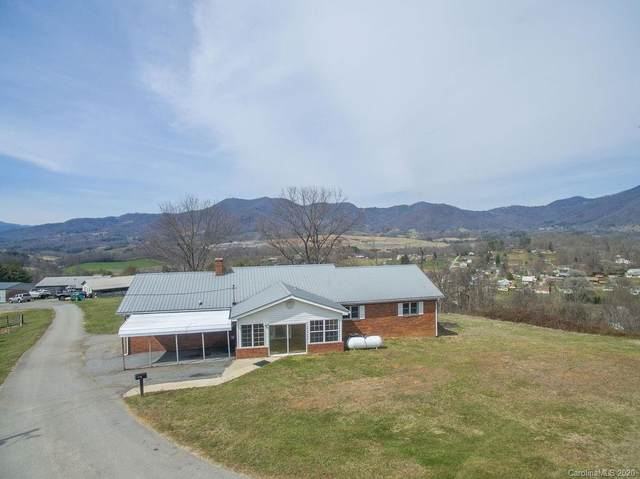 569 Terrell Cove Road, Canton, NC 28716 (#3599997) :: LePage Johnson Realty Group, LLC