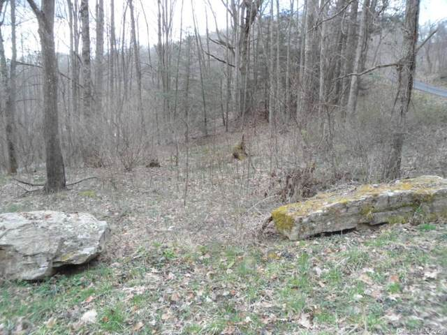 Lot 12 Coyote Hollow Road, Waynesville, NC 28785 (#3600353) :: MartinGroup Properties