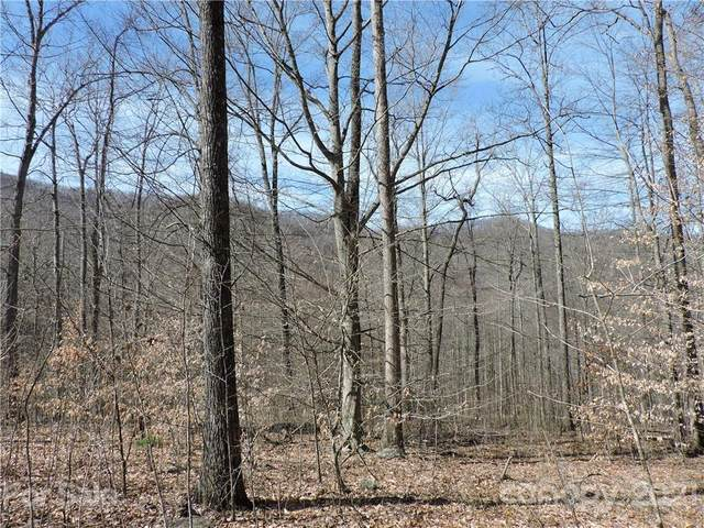 0 Sleepy Oak Lane, Spruce Pine, NC 28777 (#3601352) :: High Performance Real Estate Advisors