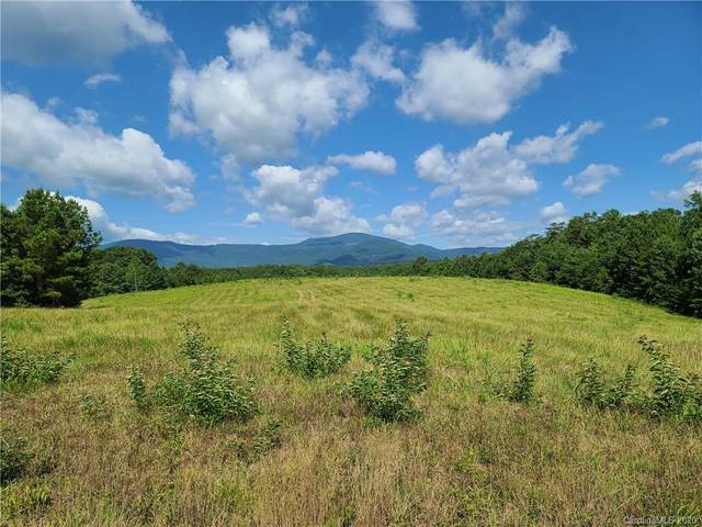 24.17 acres Walnut Falls Lane #16, Mill Spring, NC 28756 (#3601852) :: Keller Williams South Park